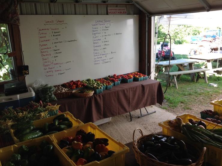 CSA Pick up at the Farm!