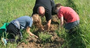 Hansens digging